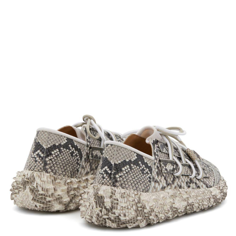 URCHIN - Grey - Low top sneakers